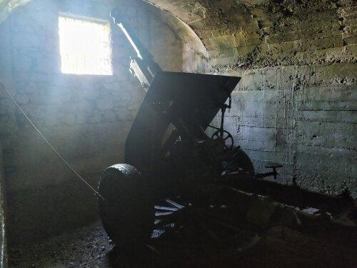 Artiglieria della Linea Cadorna